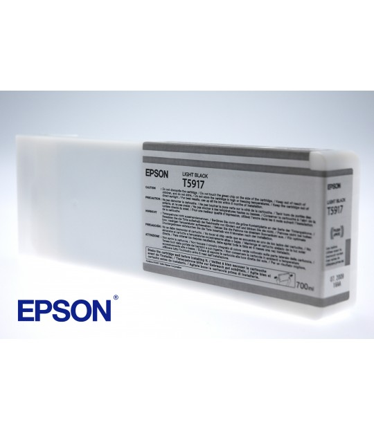 Epson Light Black StylusPro 11880