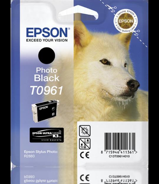 Epson Photo Black R2880