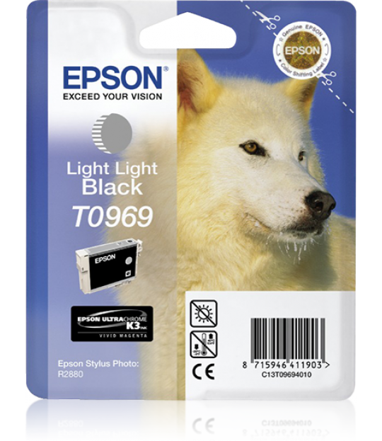 Epson Light Light Black R2880
